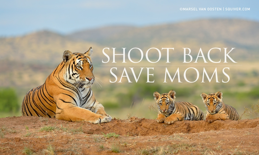 MOST_HUNTED_SHOOT_BACK_SAVE_MOMS_NEWSLETTER